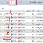 Cara Menonaktifkan SEMUA Plugin Melalui CPanel – phpMyAdmin