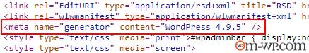 temukan-versi-wordpress-3