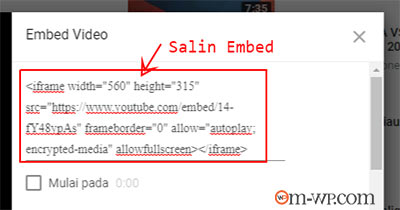 embed-video-youtube-2