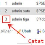 Membuat Admin User WordPress Melalui MySql (CPanel)