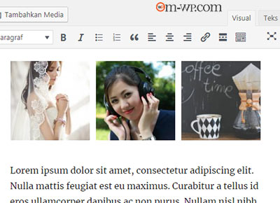 membuat-gallery-di-wordpress-3