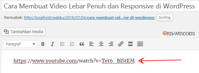 video-youtube-lebar-penuh-responsive